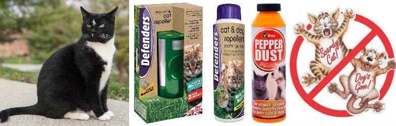 Best 5 Ways To Stop Cats Pooping In Your Garden