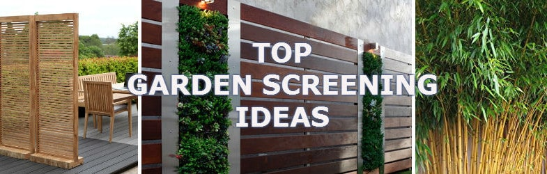 Garden Screening Ideas Get The Creative Ideas Flowing