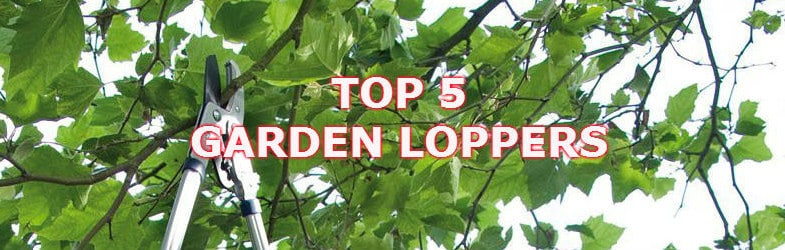 Best Garden Loppers – We review 7 of the best models