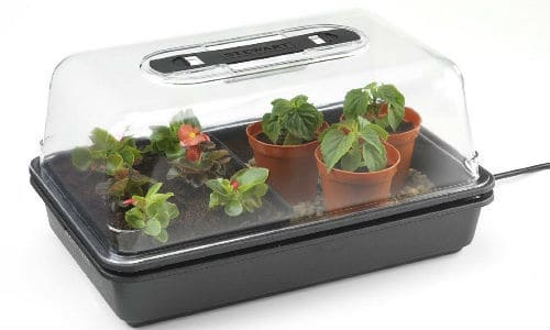 stewart essentials propagator review