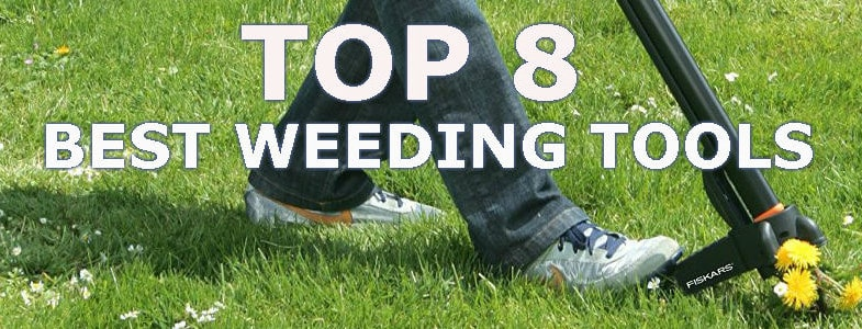 Best Weeding Tools - Top 8