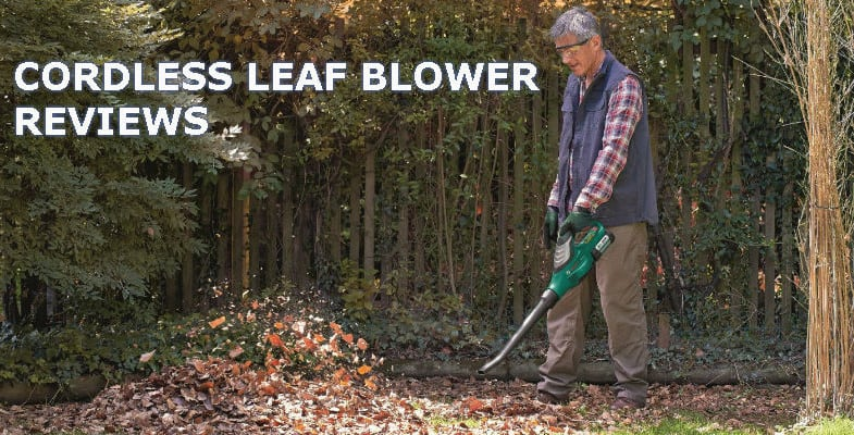 Top 6 Best Cordless Leaf Blowers For Clear Leaves
