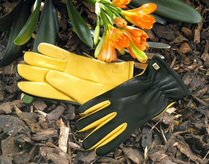 The Gold Leaf Dry Touch gloves have a beautiful soft leather design and have an attractive colour that suggest more of a fashion item that gives you a feel good wear in the garden.