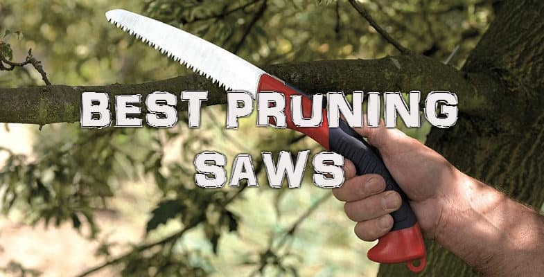 Best Pruning Saws – Reviews & comparisons, read before you buy