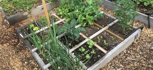 How to make a raised bed - 2ND Way