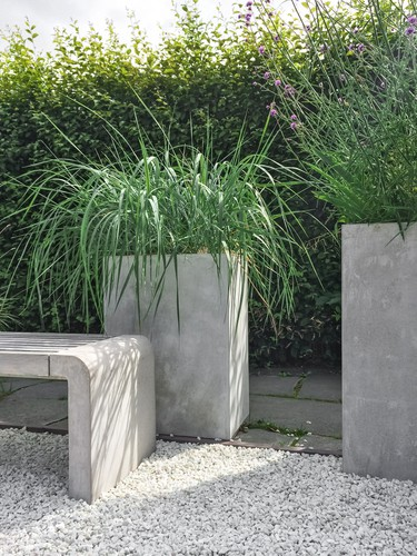 You can, of course, choose to grow your ornamental grasses in containers which gives you the opportunity to cultivate any variety you so choose which simple modifications to the placement in your garden.