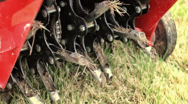 How To Aerate The Lawn – The beginner's guide