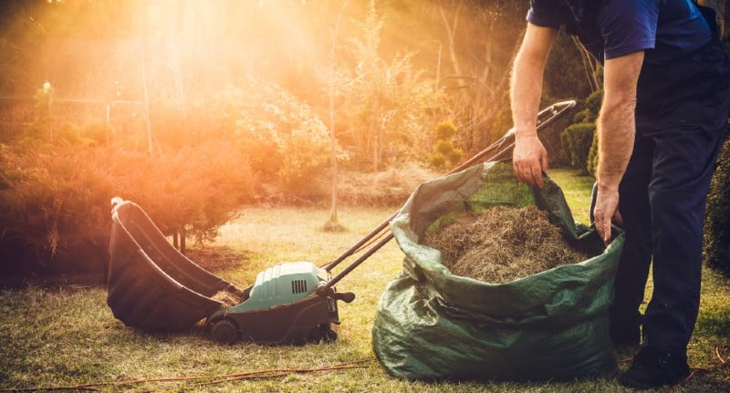 Your lawn needs food, water, and oxygen just like you do. In order to give it the circulation and are it requires you have to scarify your lawn to remove thatch, moss and remove weeds.