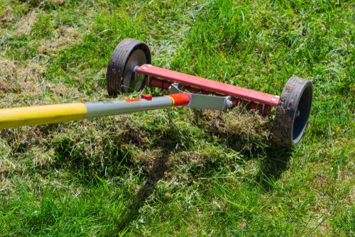 Lawn care - scarify and aerate your lawn to remove moss and thatch