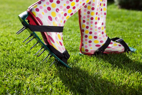 The picture is a simple foot aerator you simply attach to your shoes and walk on the lawn with. You can also get models that look like lawnmowers and handheld models.