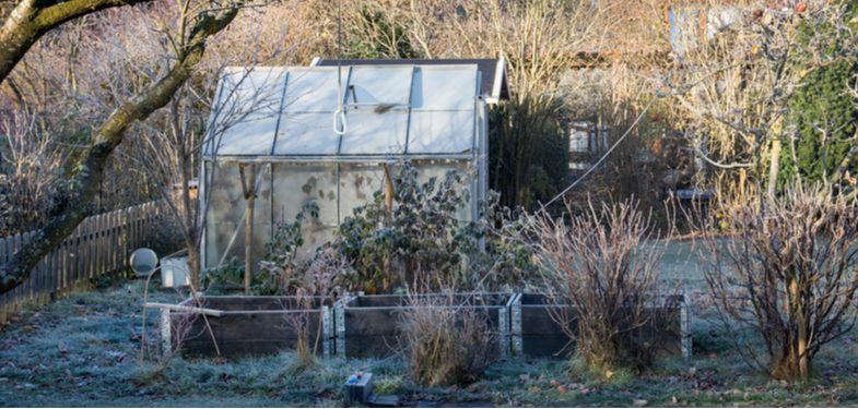 How to heat a greenhouse and everything you need to consider