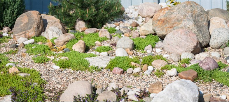 How to create and build an alpine rockery garden