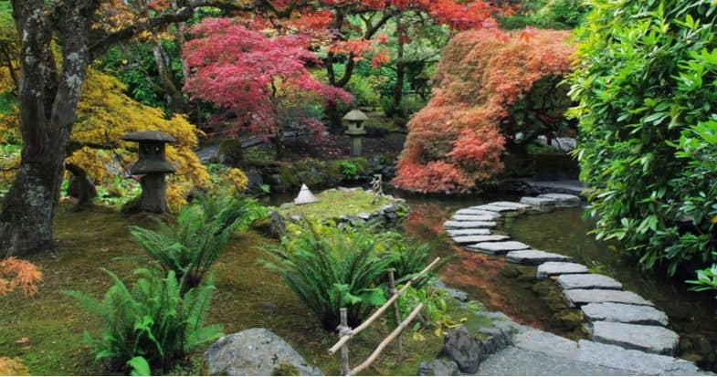 How To Make A Japanese Garden Step By Step Guide