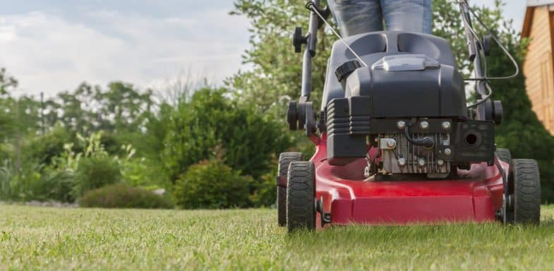 Top 6 best petrol lawn scarifiers for removing moss and thatch