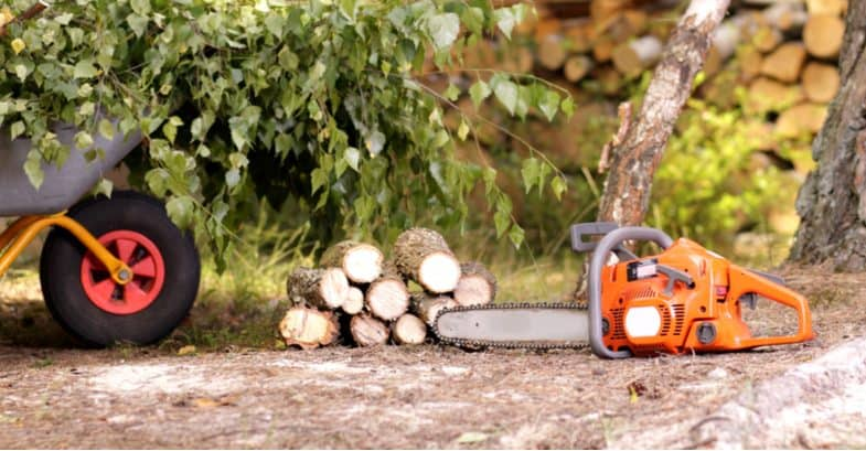 Top 5 Best petrol chainsaws for tree felling, making firewood and general garden maintenance