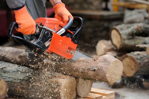 chainsaw buyers guide - professional cutting firewood with petrol chainsaw
