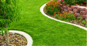 Lawn edging products come in many forms but we focus on 6 products that are easy to install and you can get set up within a day. see the best lawn edging ideas.