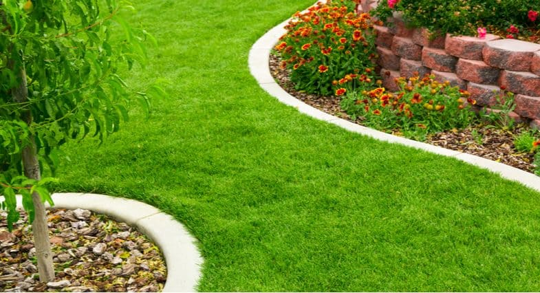 6 Best Lawn Edging Ideas – Easy to install edging products