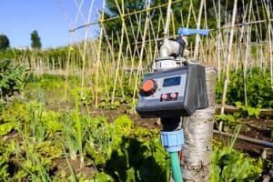 Best Automatic Watering Systems