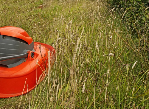 Electric hover mower mowing long grass